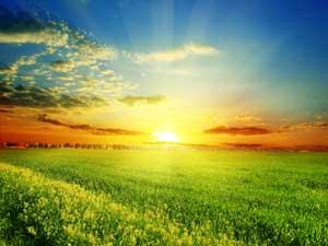 naturaleza-sol